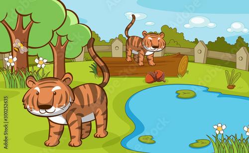 Spoed Foto op Canvas Kids Scene with tigers in the park