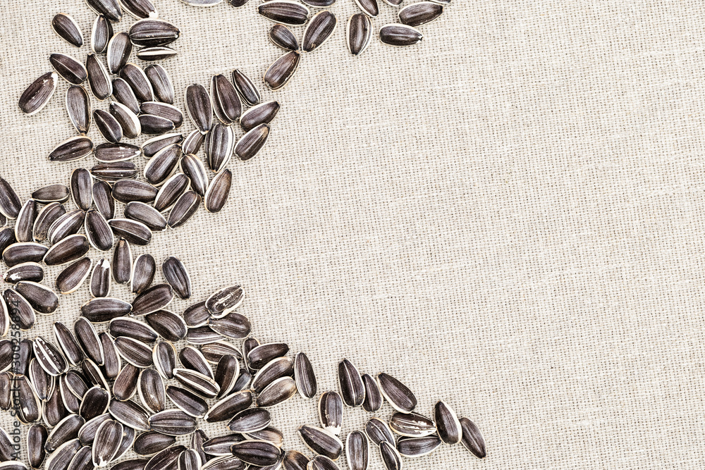 Fototapety, obrazy: Striped sunflower seeds close up on cloth with copy space. Natural background with small kernels. Top view.