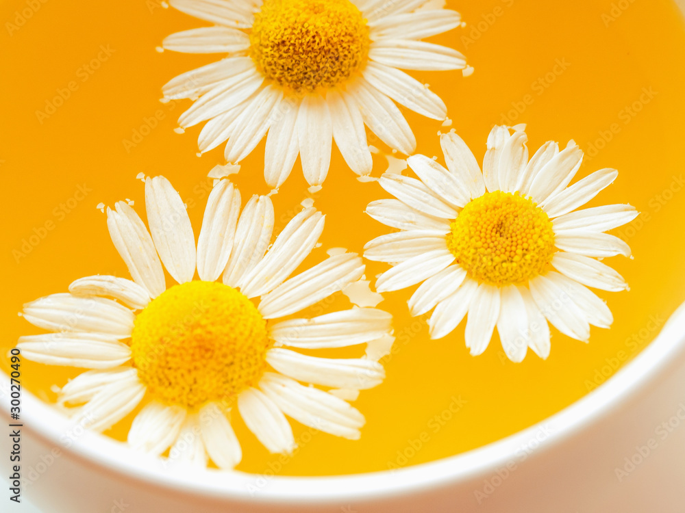 Fototapety, obrazy: Herbal tea with fresh chamomile flowers in a cup