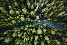 Rapids In The Forest From Above