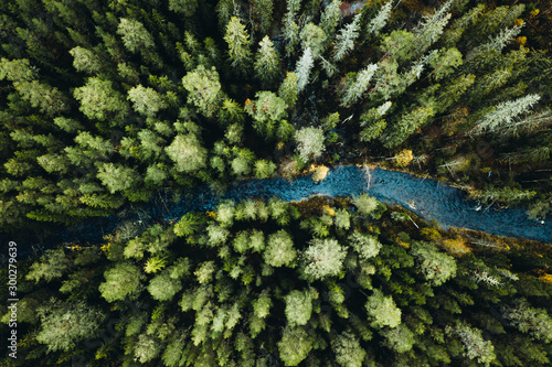 Rapids in the forest from above - 300279639