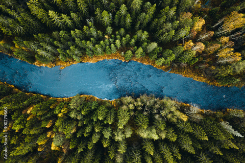 Aerial view of river passing through pine forest - 300279668