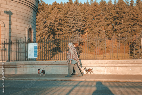 Old woman walking with dogs at Mt. Tabor's water reservoirs park Tablou Canvas
