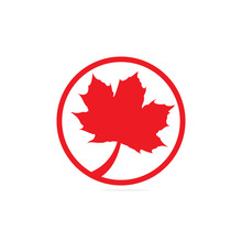 Red Maple Leaf Logo Icon Design Template Vector