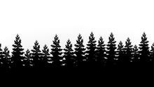 Silhouette Tannenspitzen Wald ...