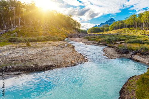 Brook on a track to Laguna Esmeralda in Tierra del Fuego