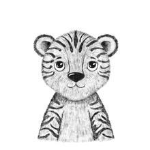 Baby Tiger. Hand Drawn Animal. Isolated