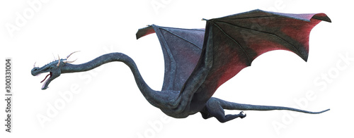 Obraz na plátně dragon isolated on white background