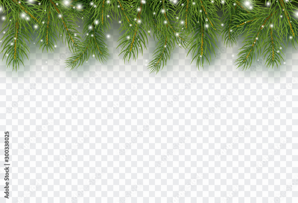 Fototapety, obrazy: Border with green fir branches isolated on transparent background. Pine, xmas evergreen plants banner. Vector snow Christmas tree garland.
