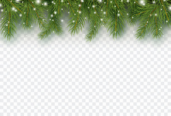 Border with green fir branches isolated on transparent background. Pine, xmas evergreen plants banner. Vector snow Christmas tree garland.