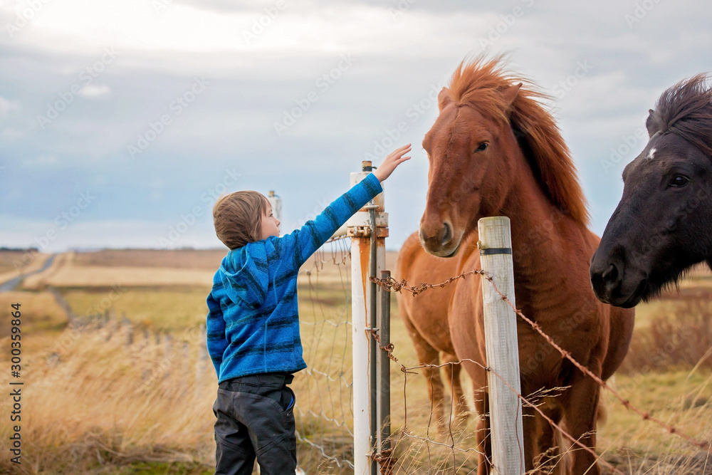 Fotografía Beautiful child and horses in the nature, early in the morning on a windy autumn