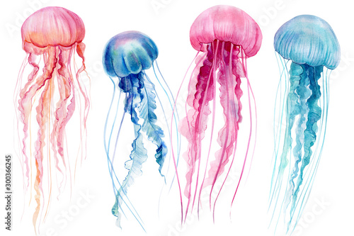 set of jellyfish on an isolated white background, watercolor illustration, hand Poster Mural XXL