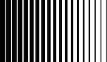 Black Vertical Lines On Halftone White Background. Linear Graphic Illustration. Vertical Lines. Geometric Element. Geometric Pattern Wallpaper Design.