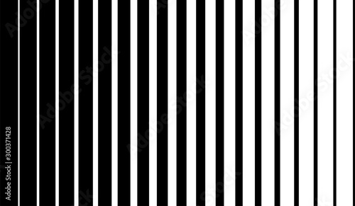 Obraz Black vertical lines on halftone white background. Linear graphic illustration. Vertical lines. Geometric element. Geometric pattern wallpaper design. - fototapety do salonu