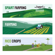 Set Of Vectors With Agriculture, Smart Farming And Rice Crops Cultivation. Illustrations Of Irrigation Drone, Tractor Spraying On Field, People Working In Paddy. Template For Poster, Banner, Flyer, Ad
