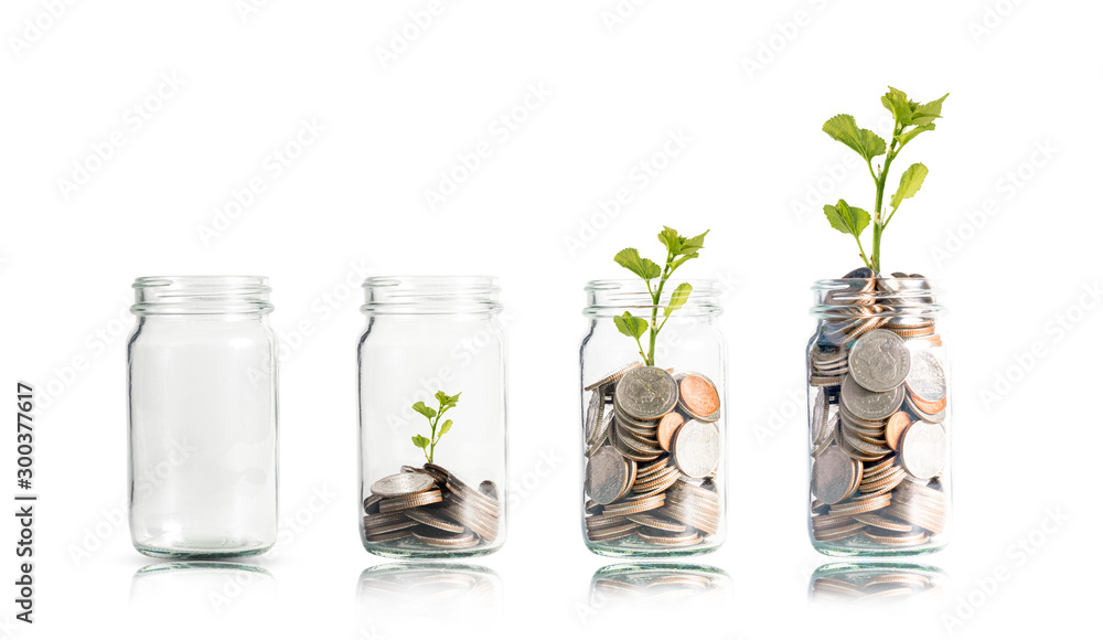 Fototapety, obrazy: Money coins and tree growing in jar. Profit on deposit in bank and dividend for stock investment concept.