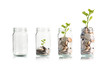 canvas print picture - Money coins and tree growing in jar. Profit on deposit in bank and dividend for stock investment concept.