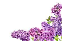 Frame Of Lilac Flowers On An I...
