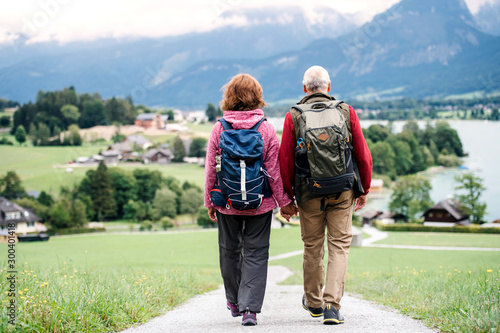 A rear view of senior pensioner couple hiking in nature, holding hands.