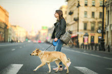 Young Woman With Dog On Leash Walking On Pedestrian Crossing