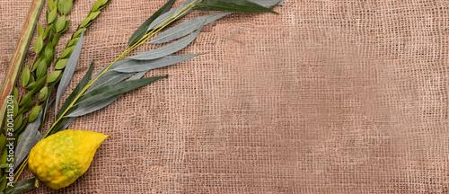 Cuadros en Lienzo Top view on Sukkot festival symbols: palm, willow, myrtle, etrog