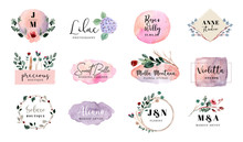 Premade Logo Floral And Brush Stroke Collection