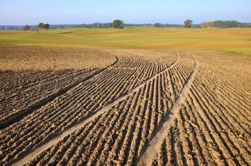 View of a plowed field in warm morning sun