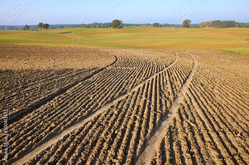 View of a plowed field in warm morning sun