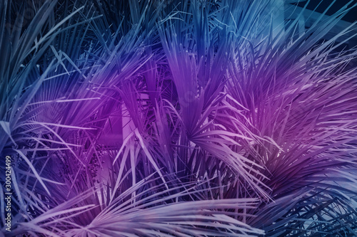 Montage in der Fensternische Violett Beautiful abstract surreal landscape palm tree and space cosmos collage concept, contemporary colors and mood social background.