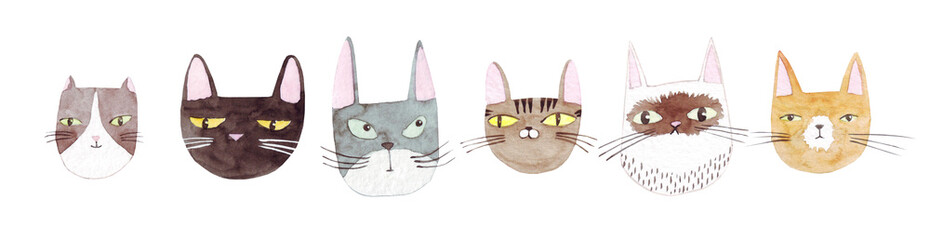Cute cats collection on white background. Colorful graphic cats, poster design. Watercolor hand drawn illustration. Painted backdrop. Cloth pattern. Cat, kitten, head.