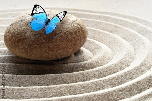 zen garden meditation stone background and butterfly with stones and lines in...