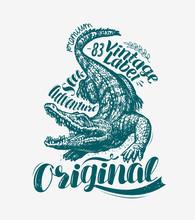 Crocodile T-shirt Design. Alligator Drawn Vintage Vector Illustration