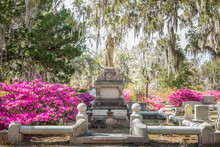 Old Historic Gravesites On Bon...