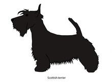 A Dog Vector Illustration Isol...