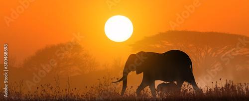 Montage in der Fensternische Rotglühen mother elephant with baby at sunset