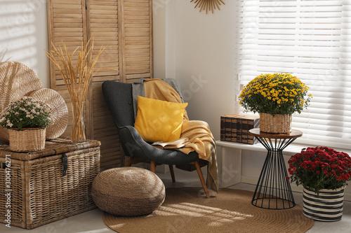 Stylish room interior with beautiful fresh chrysanthemum flowers Fototapete