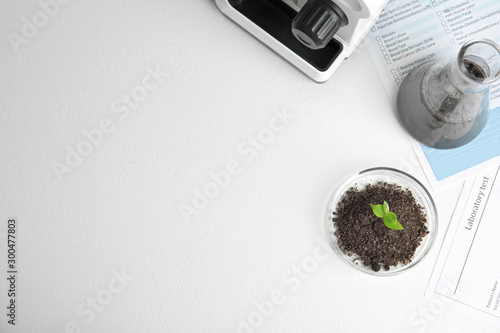 Pinturas sobre lienzo  Petri dish with soil and sprouted plant on white table, flat lay