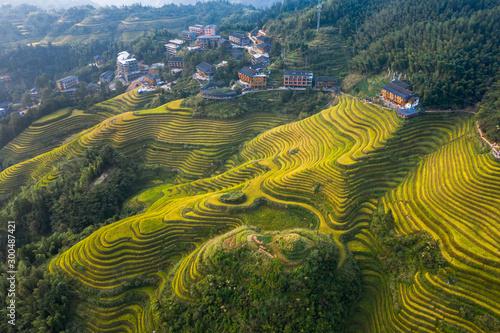 Foto auf Leinwand Khaki Longji Rice terraces China aerial View