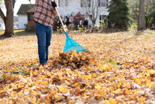 Fall Clean Up In The Backyard ...