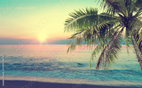 summer sea with palm tree at sunset and copy space,sky relaxing concept,beautiful tropical background for travel landscape