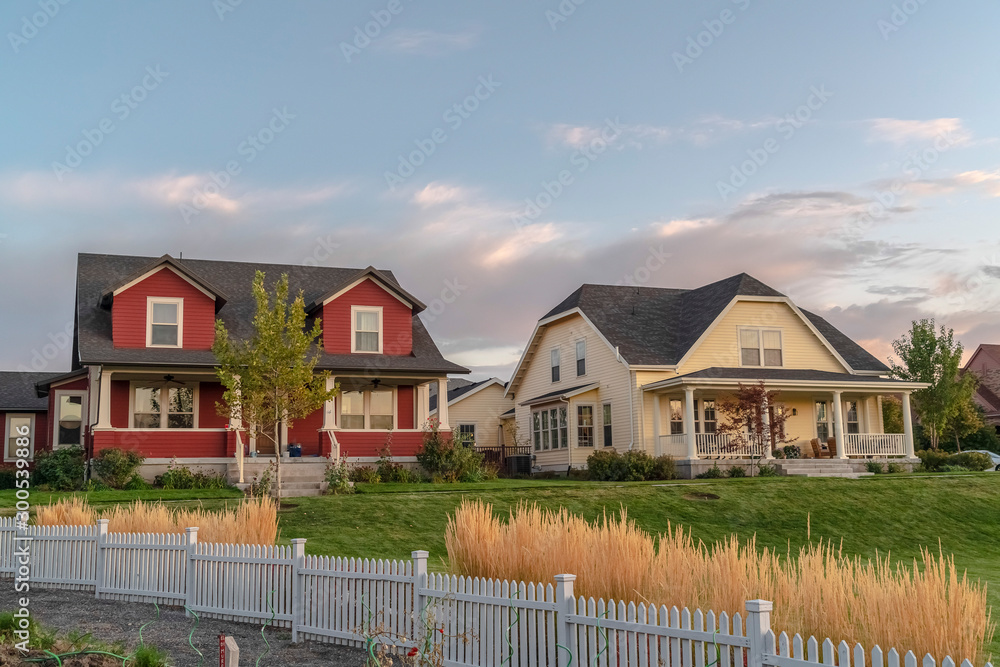 Fototapety, obrazy: White picket fence with ornamental reeds near sunset