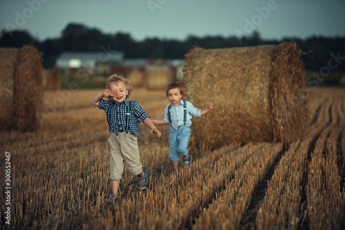 Two adorable boys having fun in the countryside