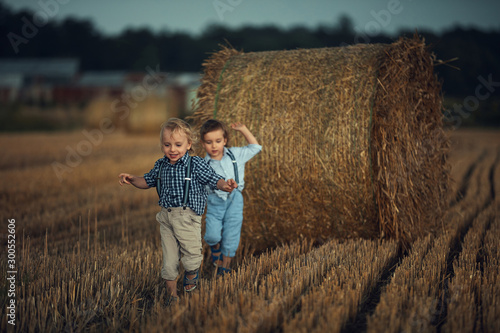 Cheerful twin brothers running on the farmland