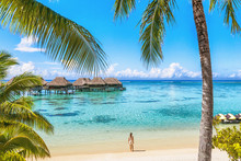 Luxury Tahiti Beach Resort Tra...