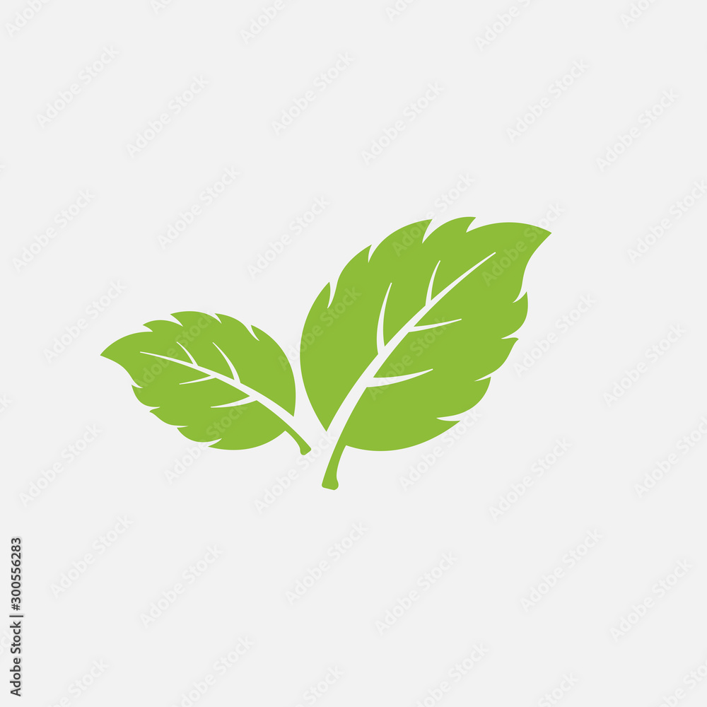 Fototapety, obrazy: mint leaf element vector icon. green mint leaves vector symbol
