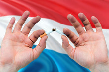 Luxembourg Quit Smoking Cigarettes Concept. Adult Man Hands Breaking Cigarette. National Health Theme And Country Flag Background.