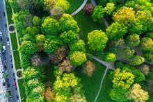 Luftaufnahme Hofgarten Düssel...