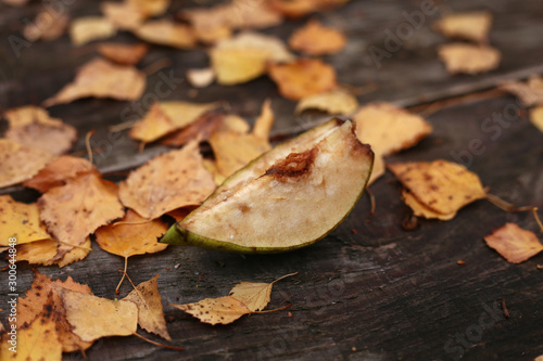 Fototapeta  A slice of weathered apple on an old wooden table surrounded by yellow foliage of birch
