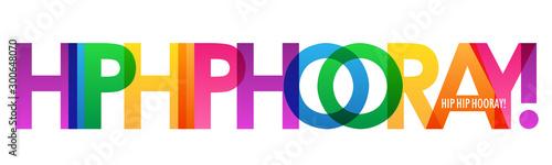 Poster Positive Typography HIP HIP HOORAY! rainbow vector typography banner