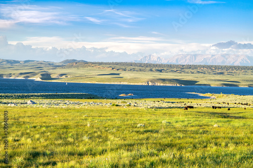 Photo  Picturesque Golden Fields and Dark Blue Lake at Sunset: Lake Crowley and the Sie